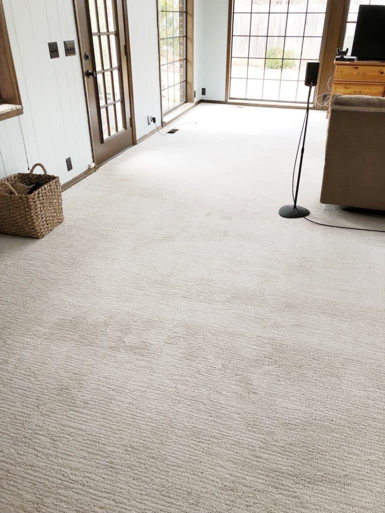 clean carpet living room