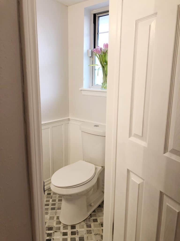 elongated toilet with tulips in window