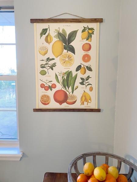 Wood framed citrus hanging poster