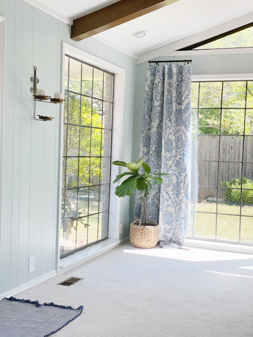 fiddle leaf fig tree in front of blue pattered curtains
